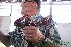ハワイアンスピルリナのリナマックス6