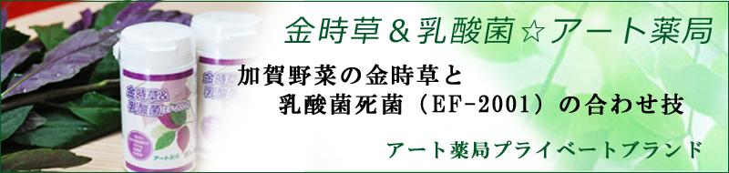 ≪金時草&乳酸菌☆アート薬局PB≫