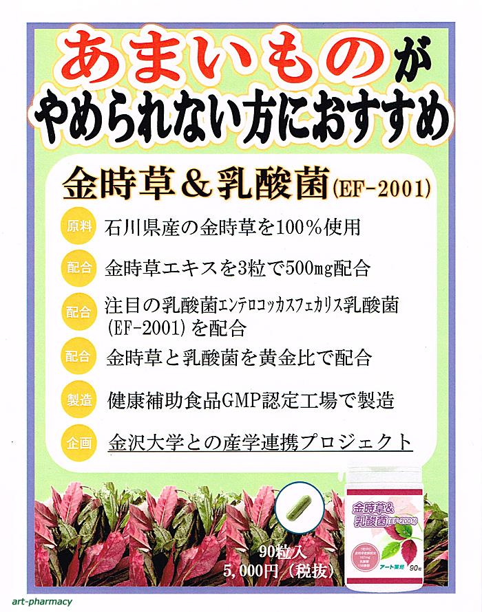 ≪金時草&乳酸菌☆アート薬局PB≫のパンフレット